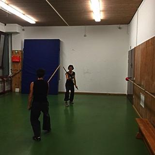 kung fu training 01